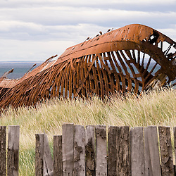 The rusted hull of the Ambassador lies on the beach in front of the abandoned Estancia San Gregorio on the Straits of Magellan.