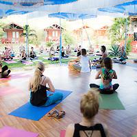 India Yoga Festival 2015
