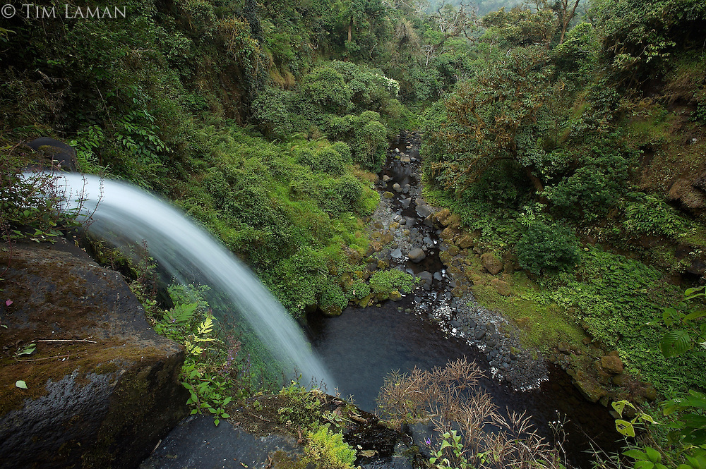 Waterfall on the Rio Santo Antonio in the upper region of the Gran Caldera Volcanica de Luba.  Caldera wall is visible in the background..Bioko Island, Equatorial Guinea.