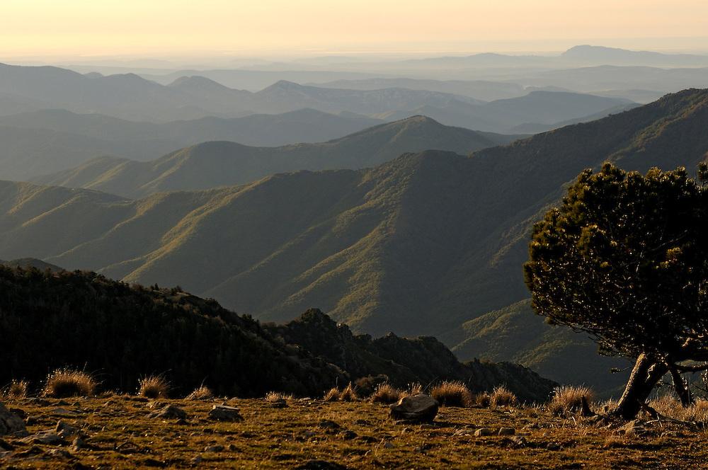 France, Languedoc Roussillon, Gard, Cévennes, massif de l'Aigoual, Cévennes méridionales
