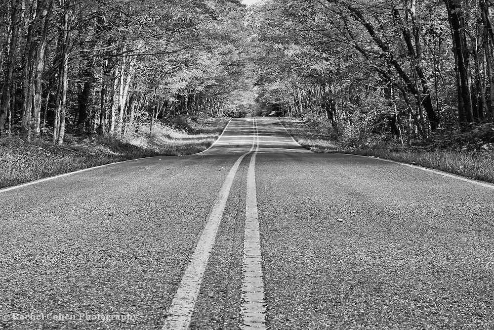 &quot;Double Yellow&quot; B&amp;W<br /> <br /> Follow the double yellow lines in this monochrome image of a scenic rural Michigan country road!!<br /> <br /> Black and White images by Rachel Cohen