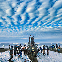 Residents of Barrow Alaska Butchering a freshly caught Bowhead whale.