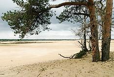 Loonse en Drunense Duinen, Natuurmonumenten, Drunen, Heusden,  Netherlands