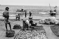 Rameswaram, India: Fishermen
