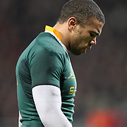France v South Africa - Rugby International