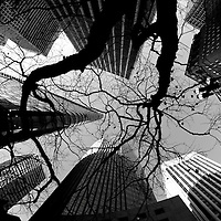 Looking up at the skyscrapers in San Francisco.Mandatory Credit: Dinno Kovic / Dinno Kovic Photography
