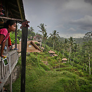In the village of Tegallalang, a Balinese teenage girl climbs on top of balcony railings anxiously waiting for the rain to stop so she can go out again and sell more postcards to tourists.