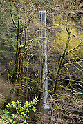 Latourell Creek plunges 249 feet over Latourell Falls in a verdant mossy temperate rain forest in Columbia River Gorge National Scenic Area, Oregon, USA.