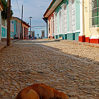 Central America, Cuba, Trinidad. Dog sleeping in the street in Trinidad, Cuba.