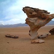 arbol de piedra, uyuni tour, bolivia
