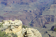Desert landscape, Grand Canyon, Arizona, United States.
