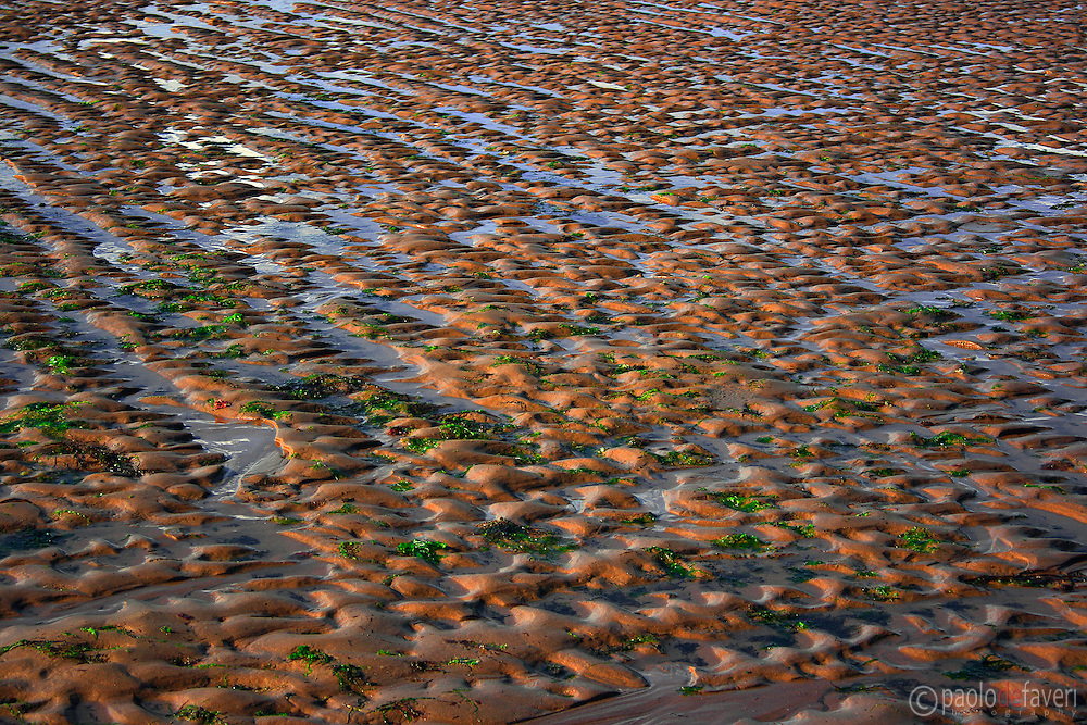 A close up view of Omaha beach in Normandy, France, in low tide, bathed in some nice, warm light at sunset.