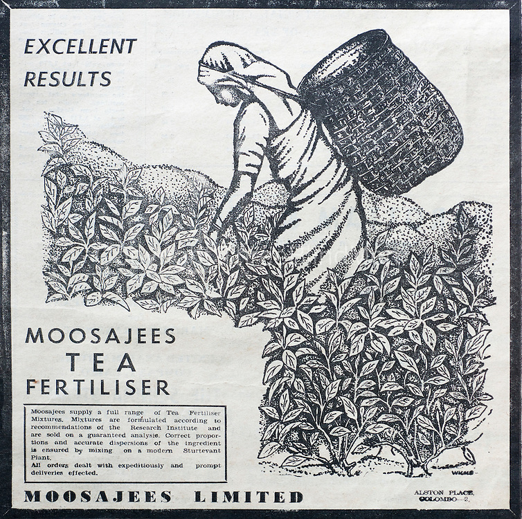 Moosajees Tea Fertiliser from TRI Library Tea Research Institute. Talawakelle.