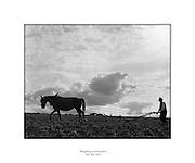 Ploughing at Stoneyford.05/07/1953