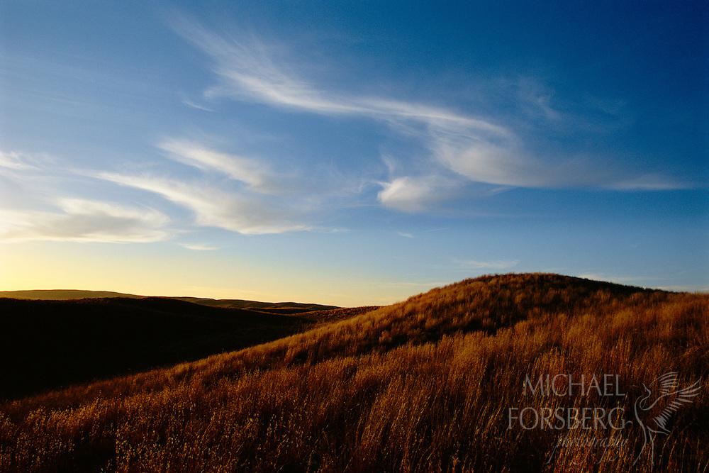 Nebraska Sandhills.