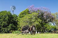 ESTANCIA EN LOS ALREDEDORES DE GUALEGUAY, PROVINCIA DE ENTRE RIOS, ARGENTINA (PHOTO © MARCO GUOLI - ALL RIGHTS RESERVED)