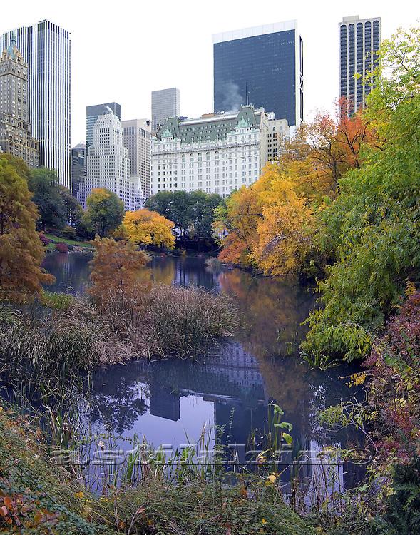 Reflection of Manhattan in Pond