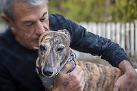 Steve Prevost and his greyhound, Grace, at his home on New Year's day in Calistoga