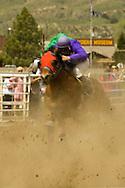 Quarter Horse Racing, Miles City, Montana, blurred motion