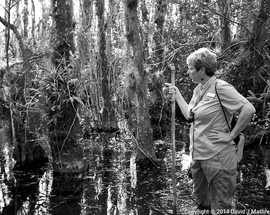 Time to get your feet wet. Swamp walk with Kristen and Angela in the Everglades behind  Clyde Butcher's Big Cyprus Gallery. Image taken with a Leica X2 camera (ISO 100, 24 mm, f/3.5, 1/80 sec).