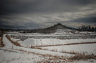 A temporary nuclear waste storage facility in Iitate-mura, a city where residents have been evacuated because of elevated radiation levels but where it is permitted to enter.  In 2012, the photograph documented a farmer in a white hazmat suit attempting to rehabilitate these fields, hoping to farm again one day.  Now, given his advanced age, that will not happen.  Iitate-mura, Fukushima Prefecture, Japan