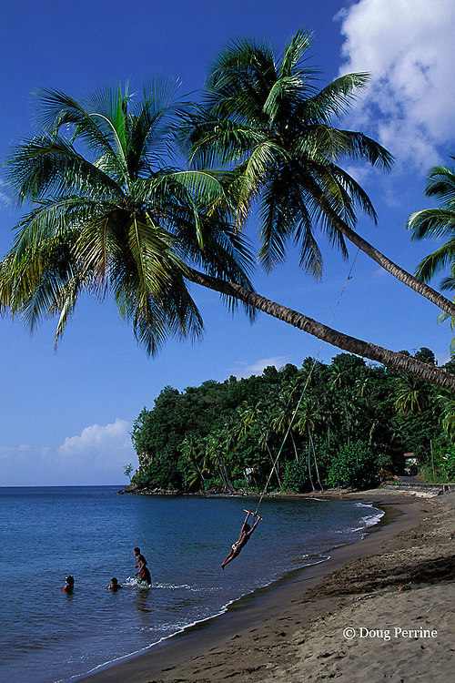 children playing on tree swing, Dominica, West Indies ( Eastern Caribbean )