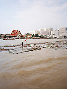 Logs floating on the Chao Phraya river
