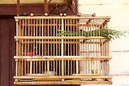 Bird cage in San Antonio de Rio Blanco, Mayabeque, Cuba.