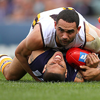 CATEGORY 5<br />