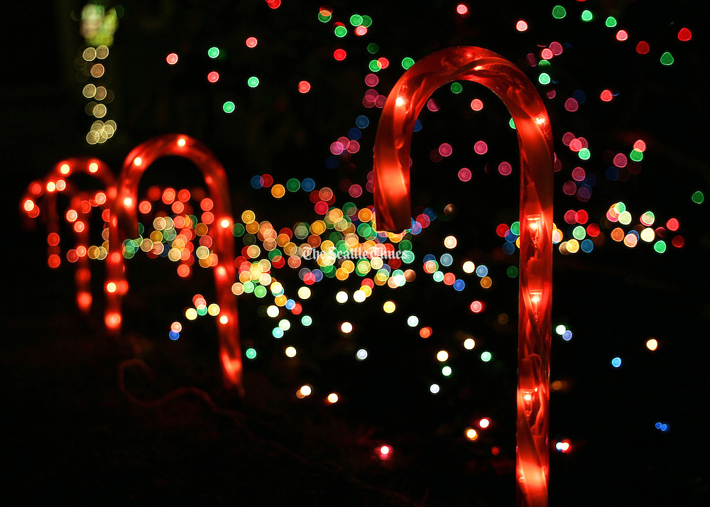 Christmas lights bring holiday cheer to the darkness.<br /> Seattle Times staff photographer