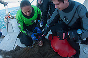 GUE Divers Work to Remove crab from ghostnet