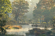 Marbletown, New York - Mist rises off the Coxing Kill at the Mohonk Preserve in Ulster County on Sept. 28, 2014.
