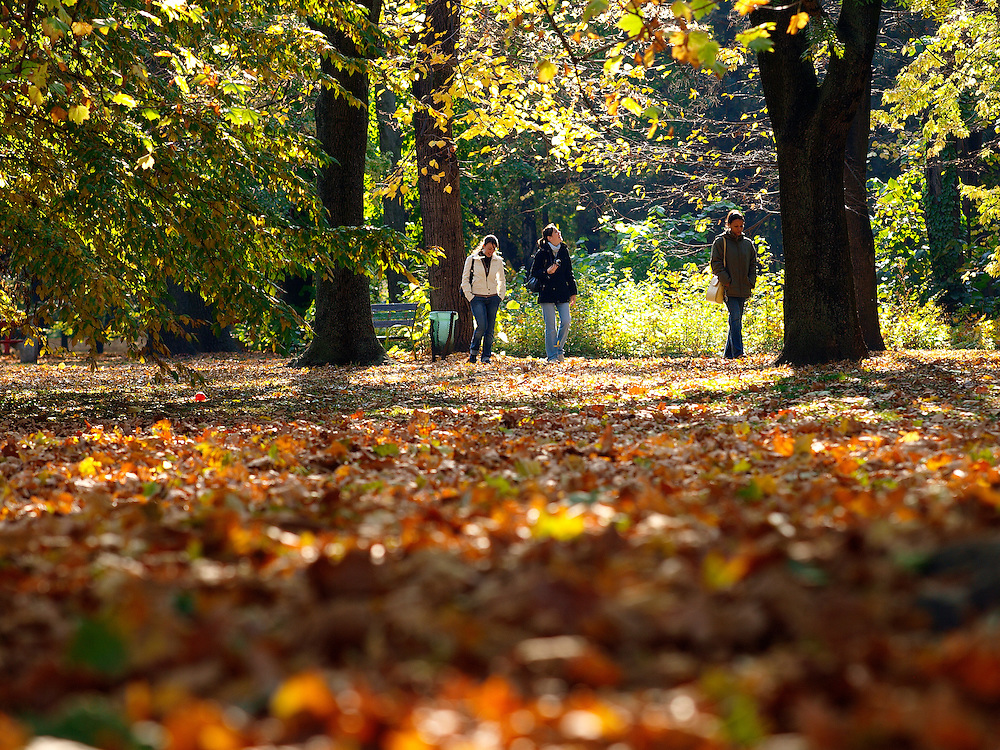 People walking in Margaret Island park, Budapest, Hungary.