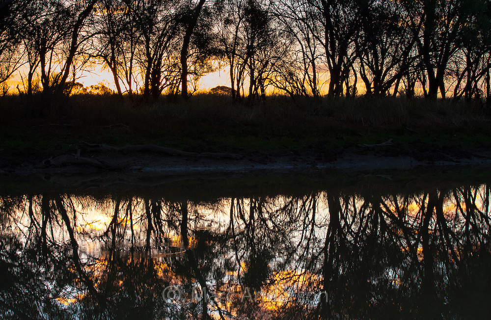 Sunset reflections by tree-lined creek in the Australian outback, near Longreach, Queensland.