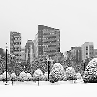 Boston winter photography photos are available as museum quality photography prints, canvas prints, acrylic prints, wood prints or metal prints. Wall art d&eacute;cor prints may be framed and matted to the individual liking and decorating needs:<br /> <br /> http://juergen-roth.pixels.com/featured/boston-noreaster-juergen-roth.html<br /> <br /> Boston Public Garden is popular with locals and tourists alike. This photo includes the George Washington Statue and parts of the financial district skyline with the newly constructed Millennium Tower and was taken after the last nor&rsquo;easter now storm. <br /> <br /> All Boston photos are available for digital and print use at www.RothGalleries.com. Please contact me direct with any questions or request. <br /> <br /> Good light and happy photo making!<br /> <br /> My best,<br /> <br /> Juergen<br /> Prints: http://www.rothgalleries.com<br /> Photo Blog: http://whereintheworldisjuergen.blogspot.com<br /> Twitter: @NatureFineArt<br /> Instagram: https://www.instagram.com/rothgalleries<br /> Facebook: https://www.facebook.com/naturefineart