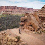 SHOT 10/14/16 3:06:33 PM - Tom Reynolds of Denver, Co. rides the White Rim Trail. The White Rim is a mountain biking trip in Canyonlands National Park just outside of Moab, Utah. The White Rim Road is a 71.2-mile-long unpaved four-wheel drive road that traverses the top of the White Rim Sandstone formation below the Island in the Sky mesa of Canyonlands National Park in southern Utah in the United States. The road was constructed in the 1950s by the Atomic Energy Commission to provide access for individual prospectors intent on mining uranium deposits for use in nuclear weapons production during the Cold War. Four-wheel drive vehicles and mountain bikes are the most common modes of transport though horseback riding and hiking are also permitted.<br /> (Photo by Marc Piscotty / &copy; 2016)