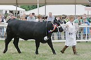 Royal Highland Show 2014. PAYMENT TO CRAIG STEPHEN 07905 483532