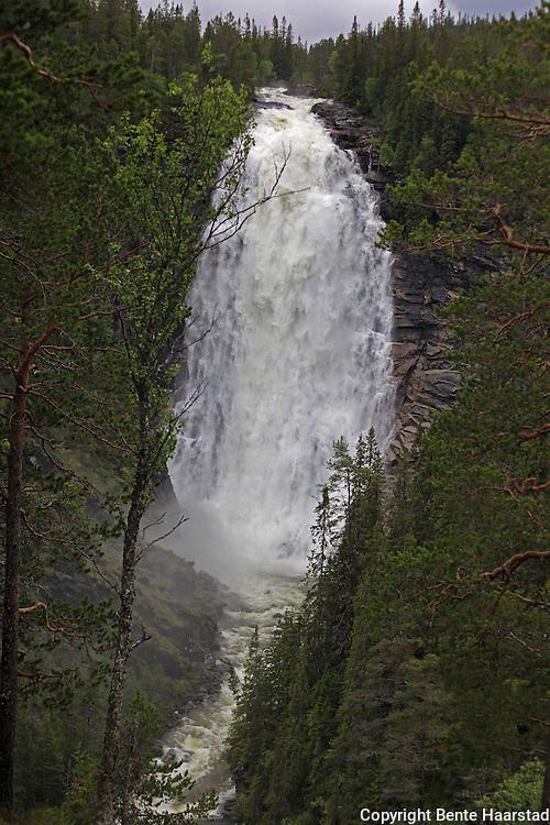 Henfallet is the biggest waterfall in S&oslash;r-Tr&oslash;ndelag, a coun ty of Mid-Norway. Henfallet er S&oslash;r-Tr&oslash;ndelags h&oslash;yeste fossefall (90 meter).<br /> Elva Hena har sitt utspring i Veunsj&oslash;en, p&aring; grensa mot Holt&aring;len. Flotte naturforhold for tur b&aring;de sommer og vinter i Tydal.