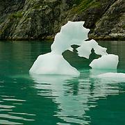 North America, United States, US, Northwest, Pacific Northwest, West, Alaska, Glacier Bay, Glacier Bay National Park, Glacier Bay NP. Ice sculptures floating in Glacier Bay, Glacier Bay National Park and Preserve, Alaska.