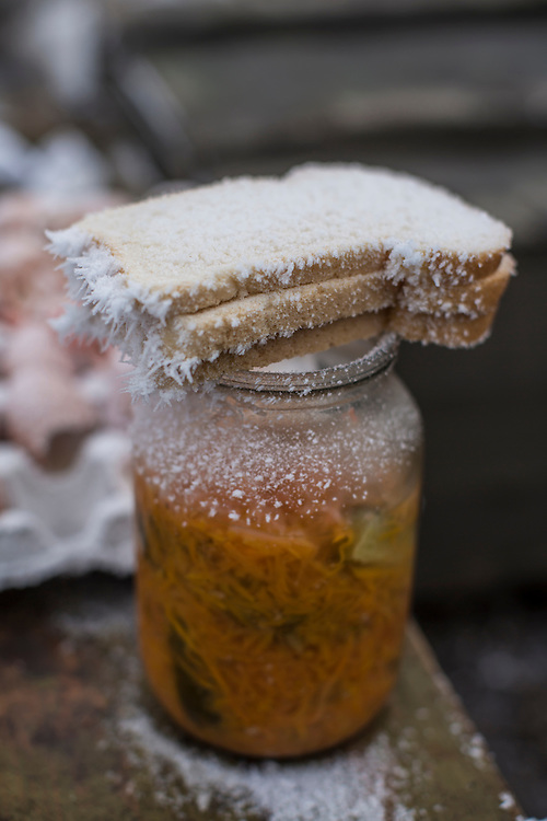 LUGANSKOYE, UKRAINE - FEBRUARY 15: Frost-covered bread at a Ukrainian checkpoint along the road to the embattled town of Debaltseve on February 15, 2015 in Luganskoye, Ukraine. A ceasefire scheduled to go into effect at midnight was reportedly observed along most of the front, save for near the embattled town of Debaltseve. (Photo by Brendan Hoffman/Getty Images) *** Local Caption ***