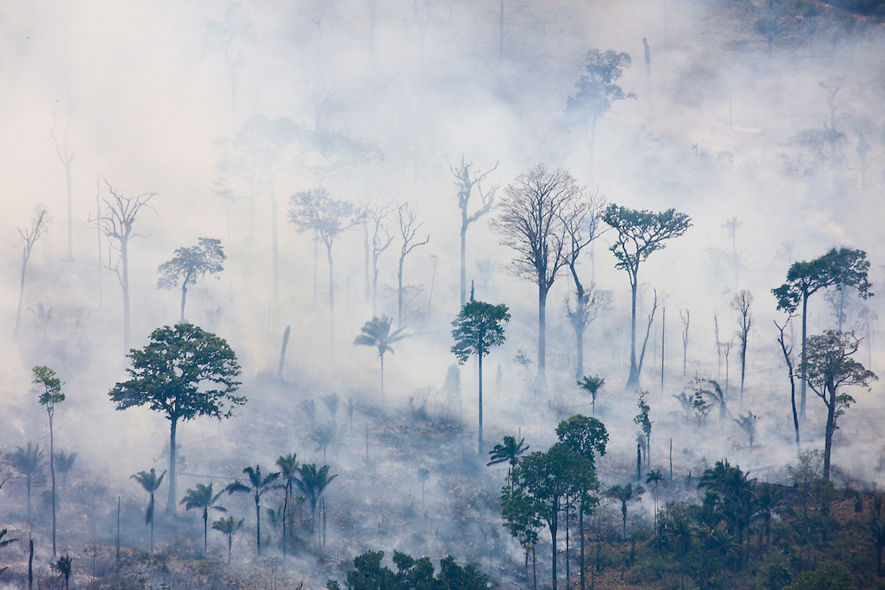 Fires burn former Amazon rainforest land to clear the ground for cattle ranching in Altamira municipality, Para State, Brazil, August 13, 2008..Daniel Beltra/Greenpeace