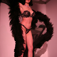 """Dita Von Teese international burlesqe star  at Phillips, de Pury art auction house benefit """"Take Home a Nude"""" to benefit The New York Academy of Art on Thursday  October 20, 2005."""