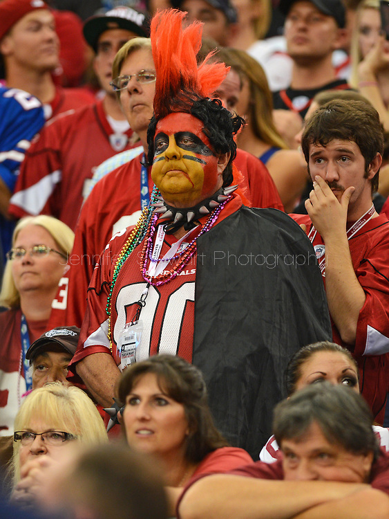Oct. 14, 2012; Glendale, AZ, USA;  Arizona Cardinals fan reacts in the stands during the game against the Buffalo Bills at University of Phoenix Stadium. The Bills defeated the Cardinals 19-16 in overtime. Mandatory Credit: Jennifer Stewart-US PRESSWIRE..