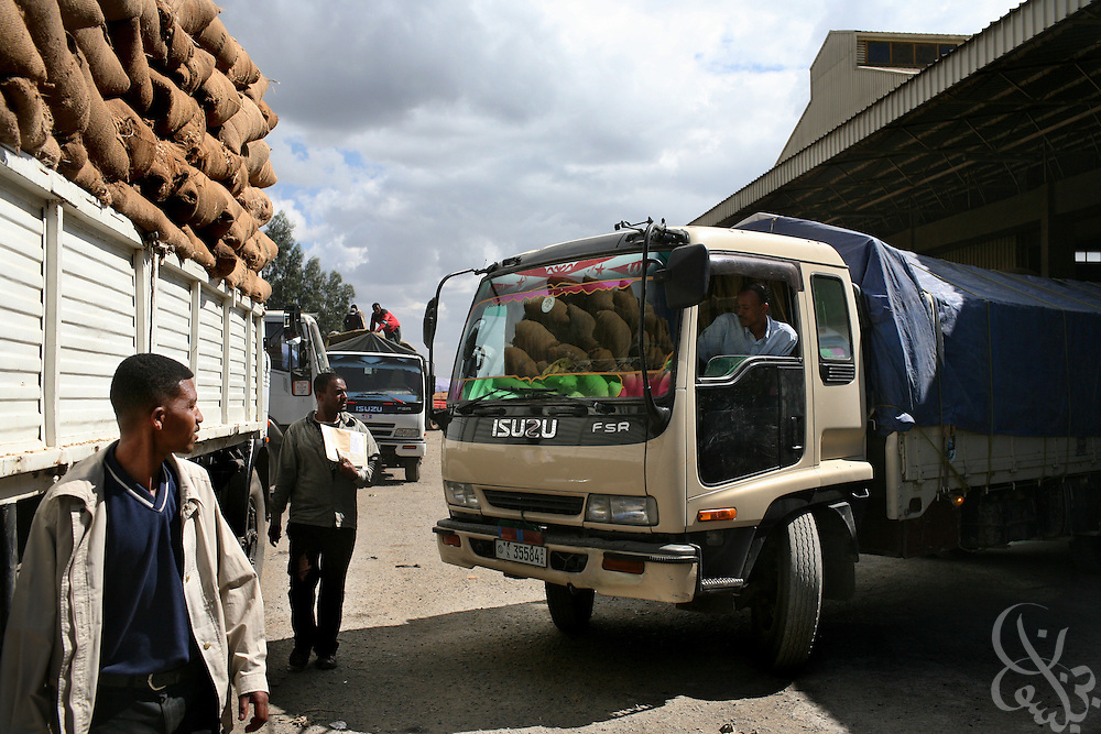 An Ethiopian truck driver delivers a load of export quality green coffee beans to the giant warehouse of the Keffa Export Coffee Processing Plant February 21, 2007 in Addis Ababa, Ethiopia.  Coffee from farms across the southern coffee growing districts are brought to the center to be sorted and processed before final export by trucks to port in neighboring Djibuti.