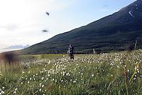 Mann på vei opp til Vasskartinden forfulgt av irriterende fluer, man on his way up to Vasskartinden followed by flys