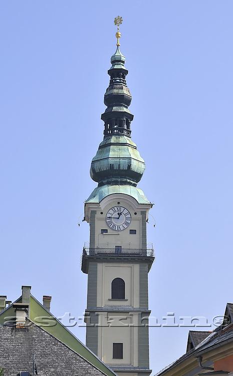 The Tower Gardian