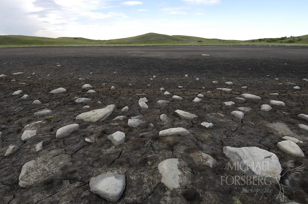 Prairie pothole region - Missouri coteau..Stones of glacial till lie exposed on a dry prairie pothole..Kidder county. North Dakota.