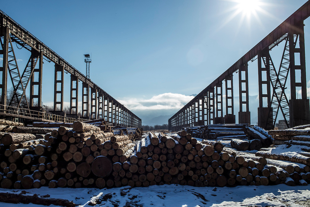 Cut trees sit outside at the Baikalsk Pulp and Paper Mill on Monday, October 28, 2013 in Baikalsk, Russia.