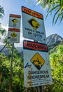 Signs at Hanakapiai Beach on Kalalau Trail warn of dangerous surf. Na Pali Coast, Kauai, Hawaii, USA. A beautiful day hike along the slippery Kalalau Trail goes from Ke'e Beach to Hanakapiai Beach, with a rougher side trip to impressive Hanakapiai Falls, in Na Pali Coast State Wilderness Park on the island of Kauai. To reach Hanakapiai Valley's waterfall, follow the signed clay trails for a moderately strenuous 8.8 miles round trip with 2200 feet cumulative gain (measured on my GPS), and bring plenty of fresh water. I recommend boots with sturdy tread, hiking poles, plus water shoes for the several stream crossings. Arrive early to get parking at the trailhead in Haena State Park at the end of the Kuhio Highway (Hawaii Route 560). The gorgeous Kalalau Trail was built in the late 1800s to connect Hawaiians living in the remote valleys. No permit is needed for day hiking to Hanakapiai Falls. But hikers going onwards from Hanakapiai Beach to Hanakoa and Kalalau Valleys require a camping permit from the Hawaii Department of Land and Natural Resources (HDLNR).