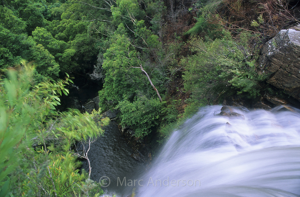 Looking over the top of a rainforest waterfall, Kellys Falls, Royal National Park, Australia.
